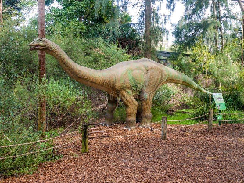 Apatosaurusskärmmodell i den Perth zoo royaltyfria foton