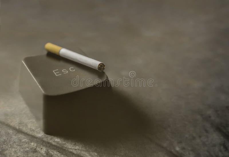 Apego de la nicotina y del tabaco imagen de archivo