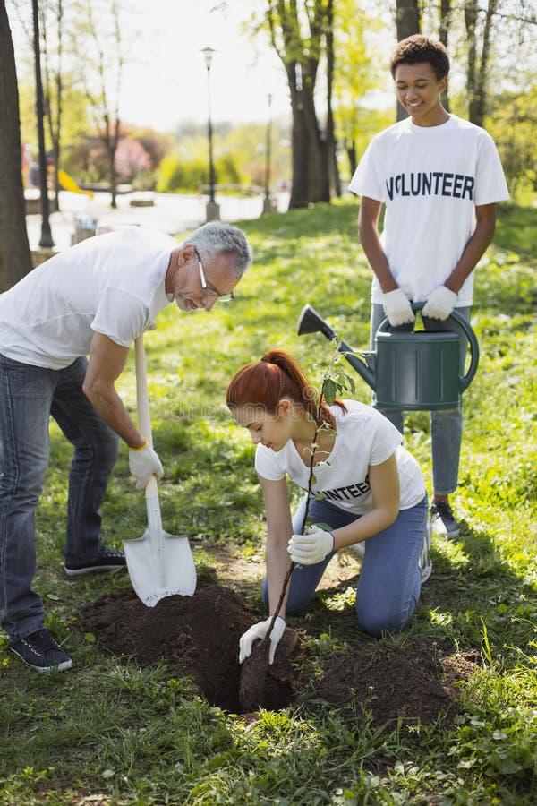 Apelando três voluntários que sentam a árvore fotos de stock royalty free