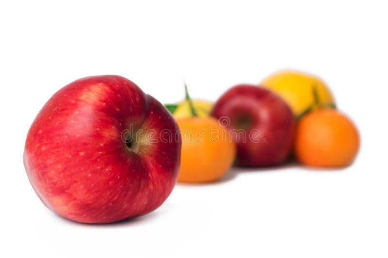 Apelsin, äpple, tangerin och citroner på den vita bakgrunden royaltyfria foton