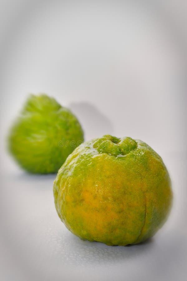 Apelsin f?r natur f?r organisk tangerinThailand mat s?t arkivbilder