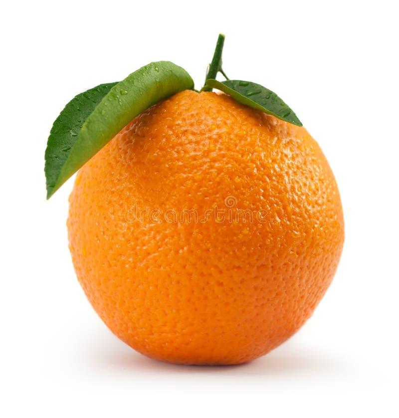 Apelsin med bladet royaltyfri bild