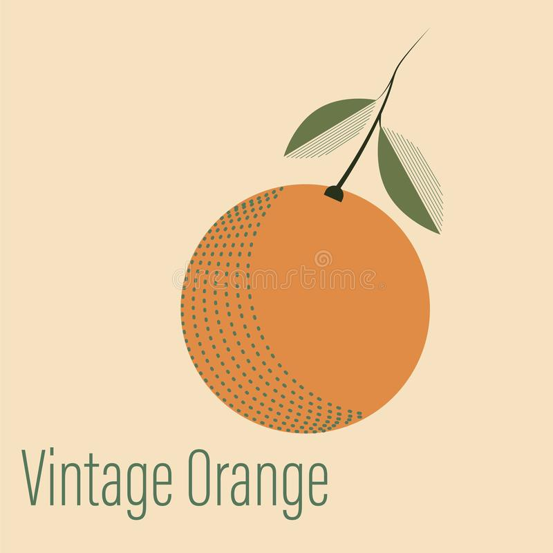 Apelsin med en kvist av tappningstil arkivbild