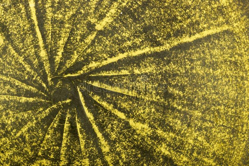 Apelsin och gräsplan bakad leralergodsbakgrund arkivbild