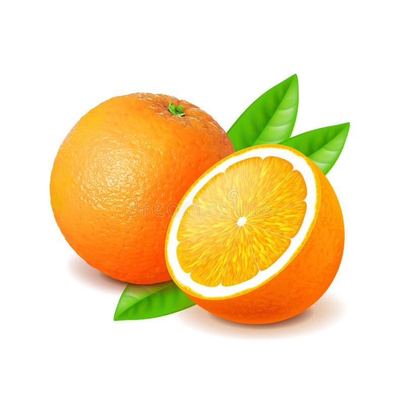 Apelsin och skiva på den vita vektorn stock illustrationer