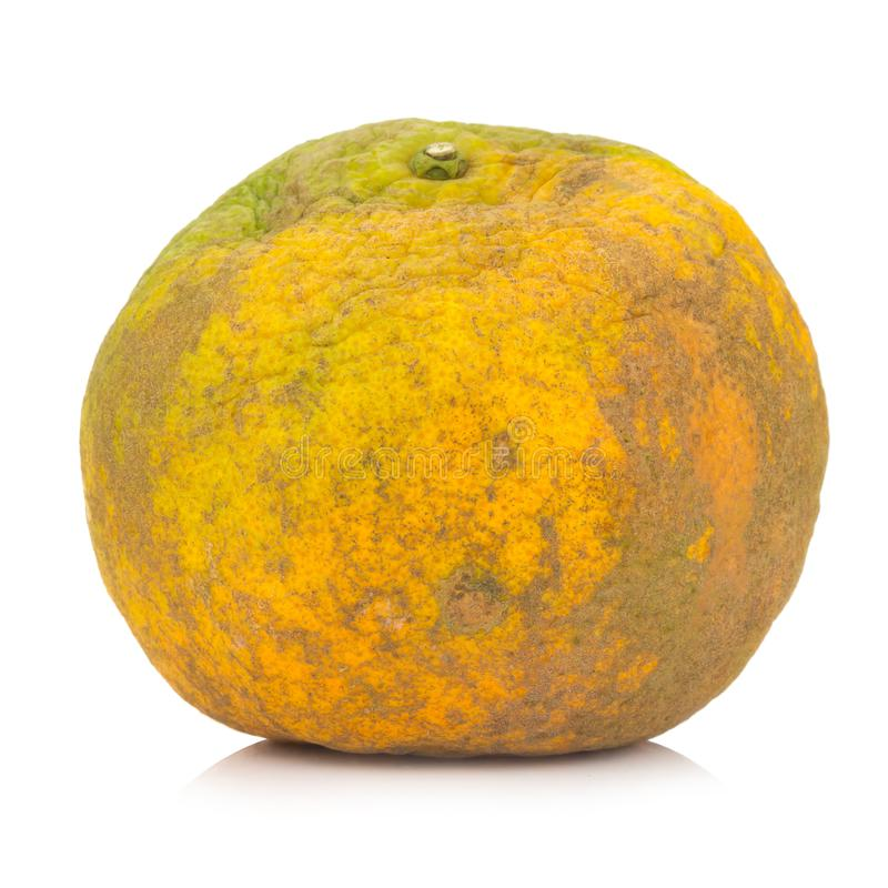 Apelsin ruttet smutsigt bakgrund isolerad white royaltyfri bild