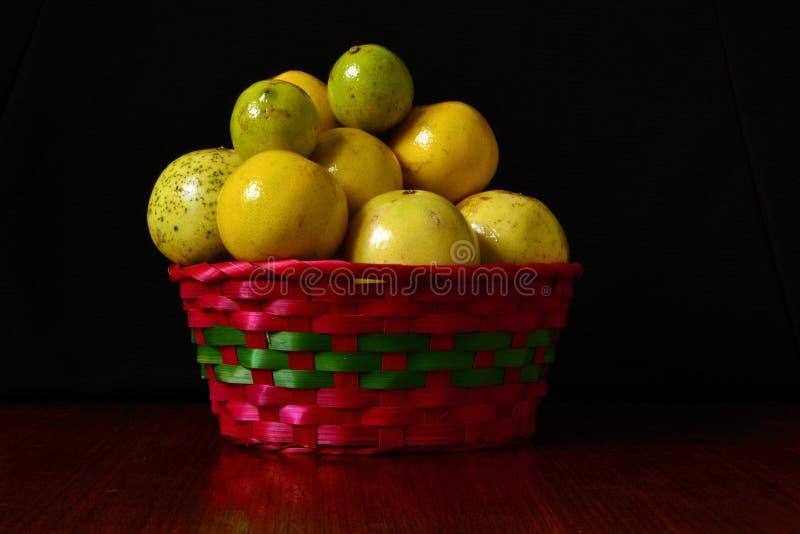 Apelsiner grapefrukter, lösa citroner royaltyfri fotografi
