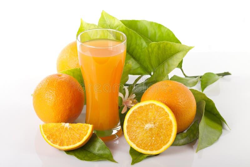 Apelsiner och sidor för orange träd bredvid ett exponeringsglas som är fullt av isolerad orange fruktsaft royaltyfri foto