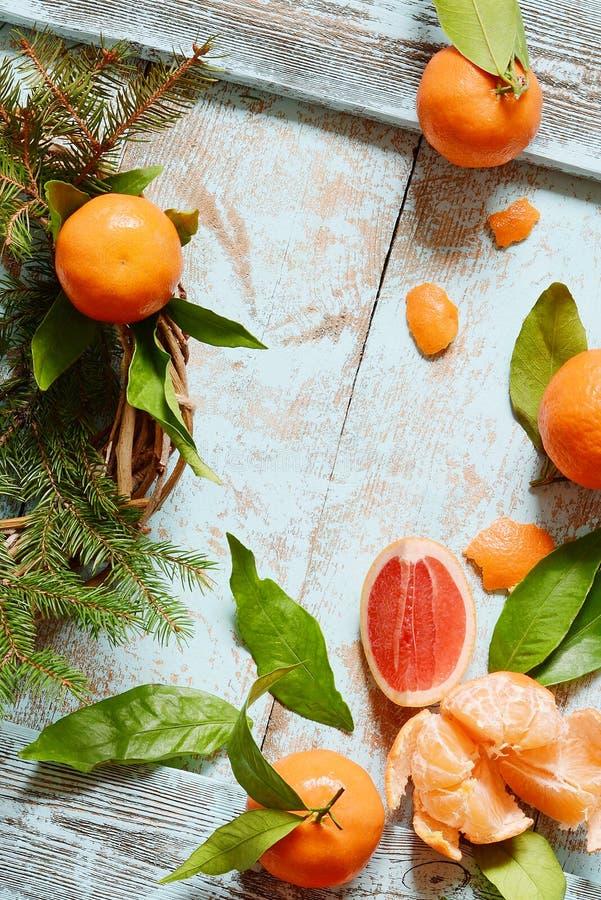 Apelsiner, tangerin, grapefrukt med sidor och filialer av en julgran, krans Jul nytt år, begrepp, kopieringsutrymme royaltyfria foton