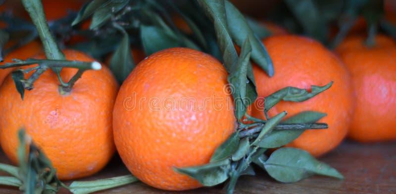 Apelsiner utan bekämpningsmedel och glyphosates arkivbilder