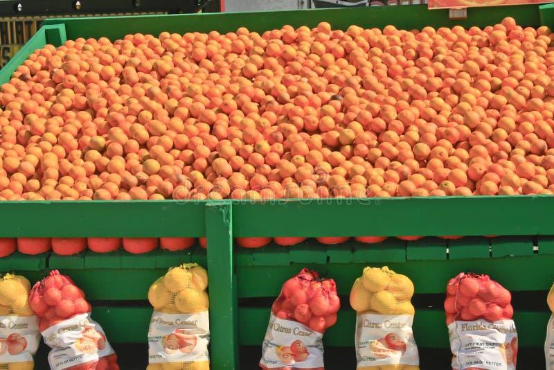 apelsinförsäljning royaltyfria bilder