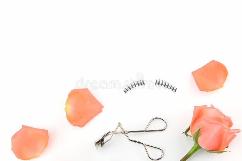 Apelsinrosen och kronblad, fejkar ögonfrans och ögonfranshårrullen royaltyfria foton