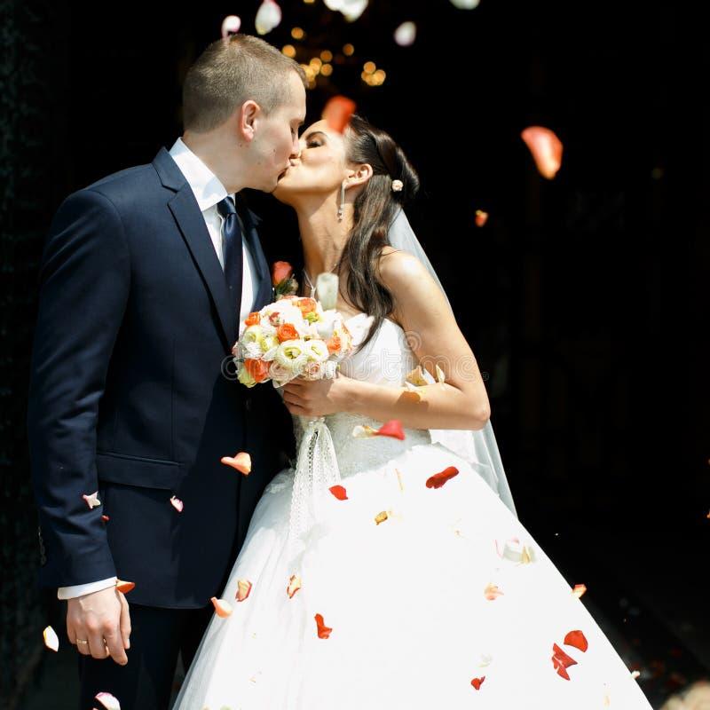 Apenas besos casados de la pareja en la lluvia de pétalos color de rosa imágenes de archivo libres de regalías
