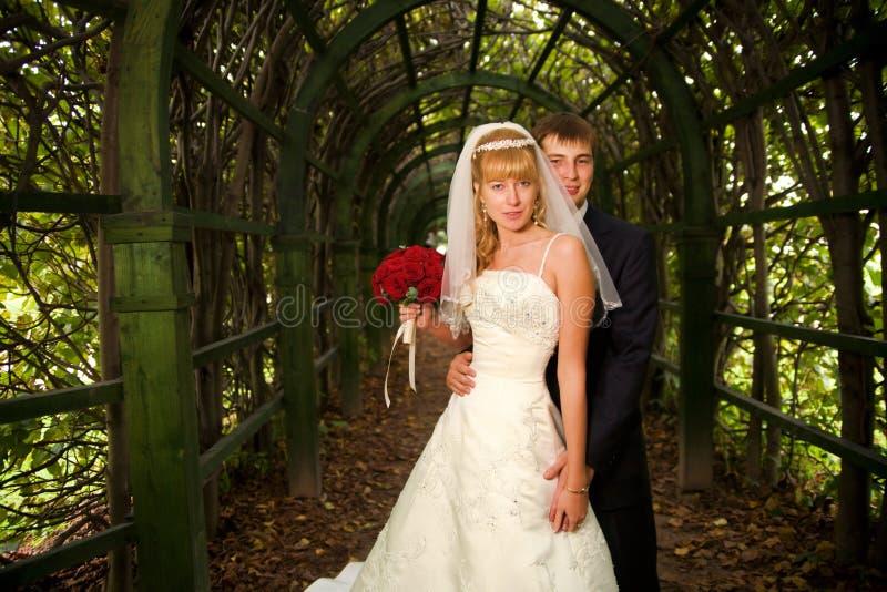 Apenas casado imagen de archivo