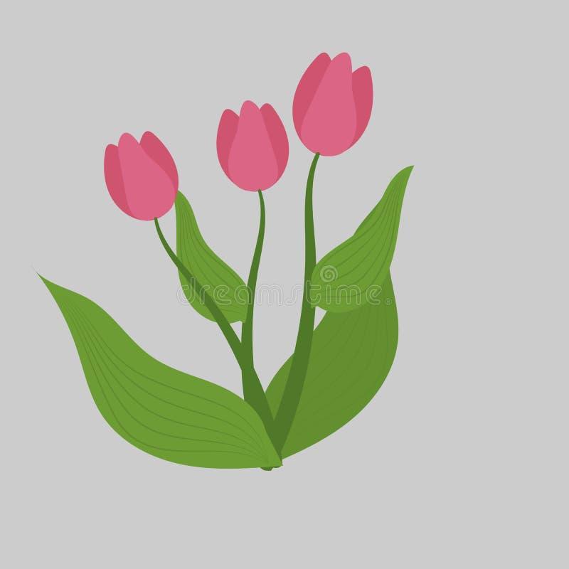 Apenas chovido sobre Esboço do vetor da tulipa ilustração royalty free