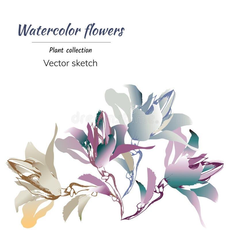 Apenas chovido sobre Flores tiradas mão da aquarela de cores diferentes em um fundo branco Para decorar seus cartões, feriados no ilustração royalty free