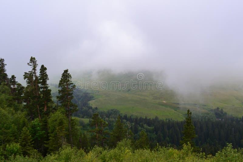 Apenas hermoso, espacioso, libere a veces muy la falta en vida cotidiana La mirada es natural y no alterada, con la niebla cubrie fotografía de archivo