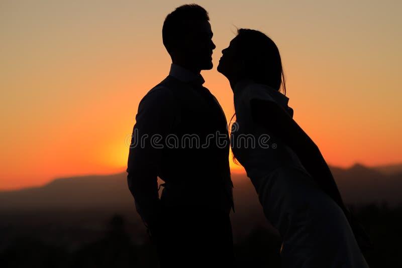 Apenas pareja casada en la puesta del sol fotografía de archivo