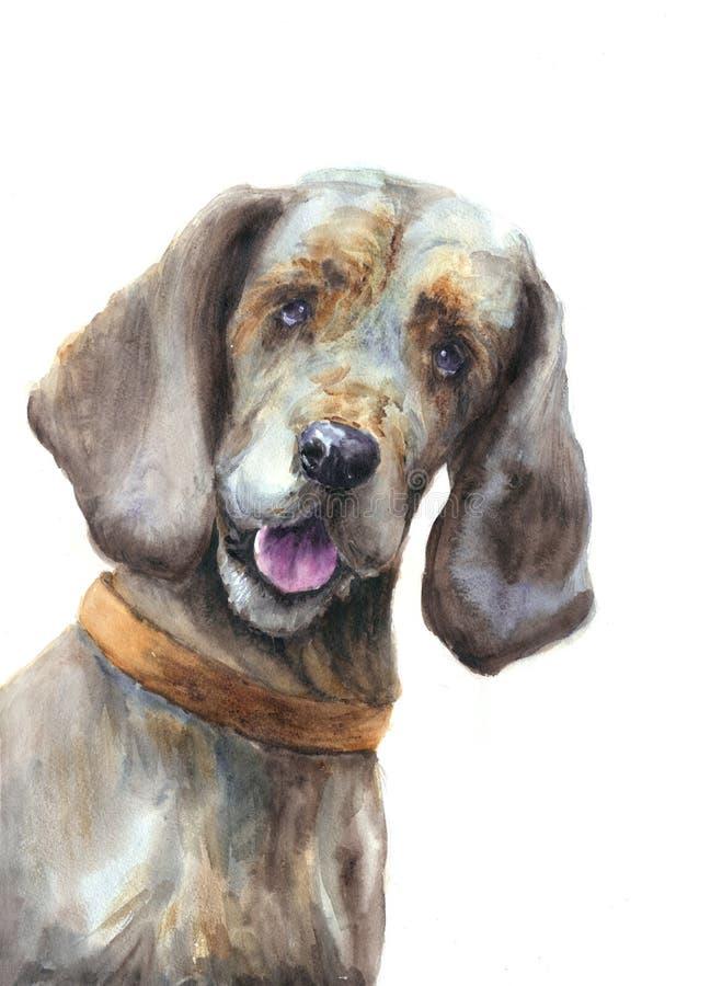 Apenas um cão ilustração do vetor