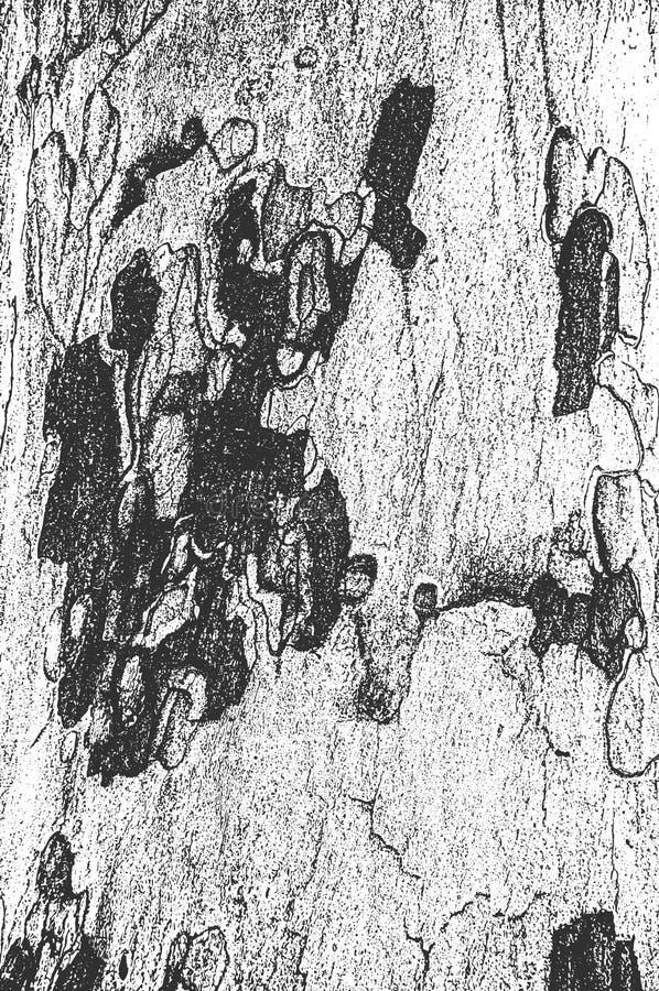 Apene la vieja textura de madera seca de la corteza libre illustration