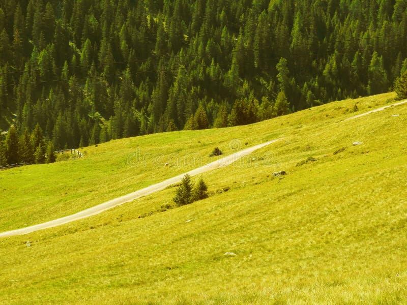 Aperçu des montagnes tyroliennes du sud photo libre de droits