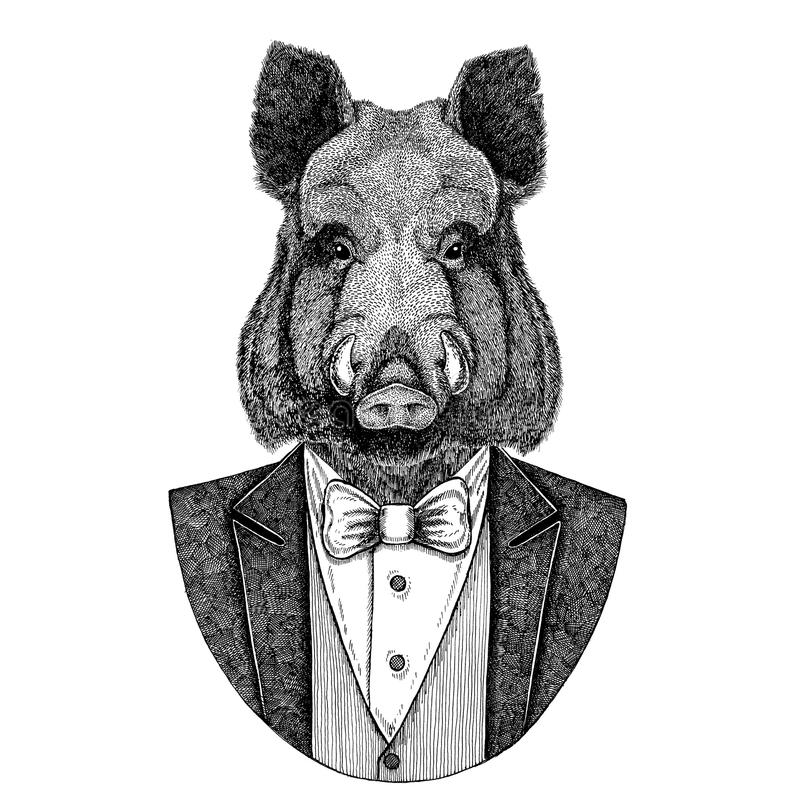 Aper, beer, varken, everzwijn, varken, het dierlijke Hand getrokken beeld van Hipster voor tatoegering, embleem, kenteken, emblee stock illustratie