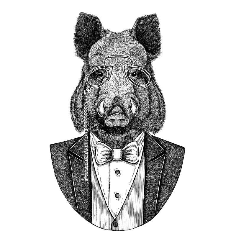 Aper, beer, varken, everzwijn, varken, het dierlijke Hand getrokken beeld van Hipster voor tatoegering, embleem, kenteken, emblee royalty-vrije illustratie