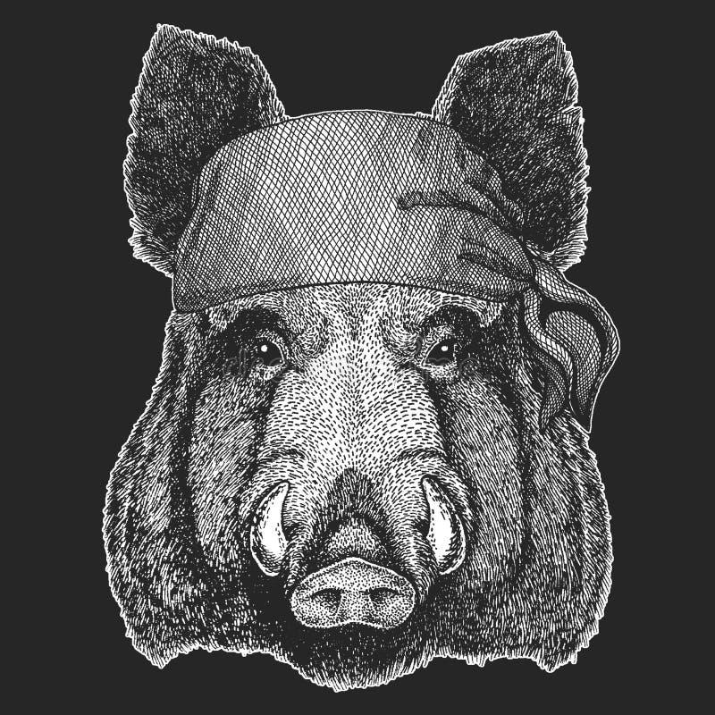 Aper, knur, dzikiego wieprza Chłodno pirat, żeglarz, seawolf, żeglarz, rowerzysty zwierzę dla tatuażu, koszulka, emblemat, odznak ilustracji
