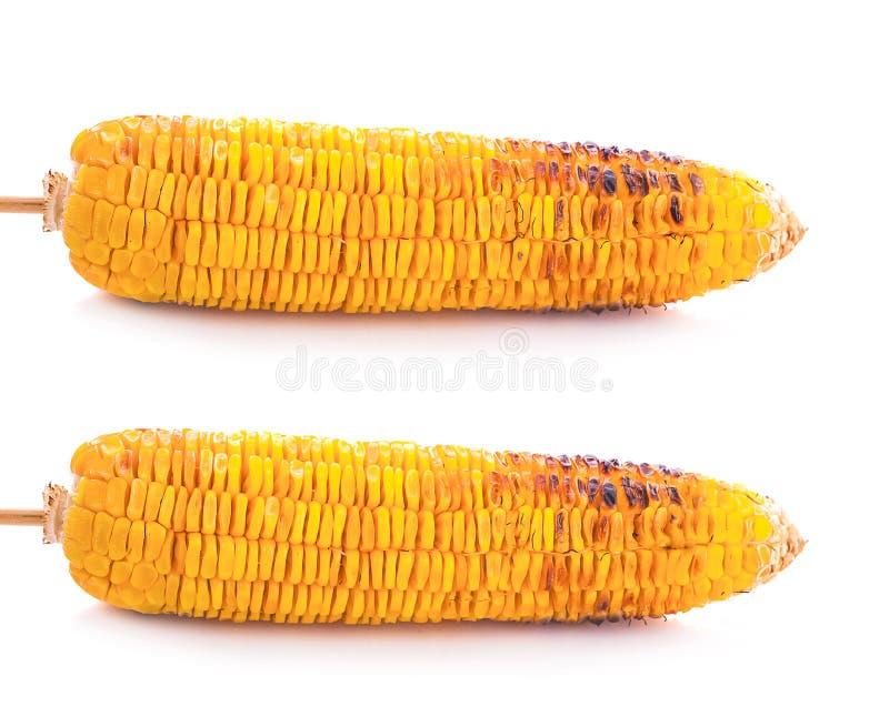 Aperitif gegrillter Mais im weißen Hintergrund stockfoto