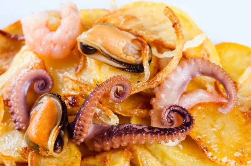 Aperitivo do polvo dos chocos, dos mexilhões, do camarão e de batatas fritadas Vista macro fotos de stock royalty free