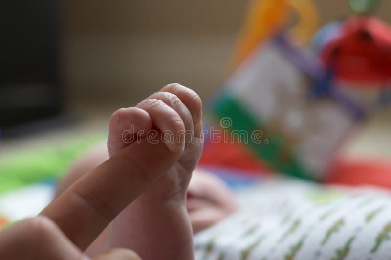 Aperto Do Bebê Fotografia de Stock