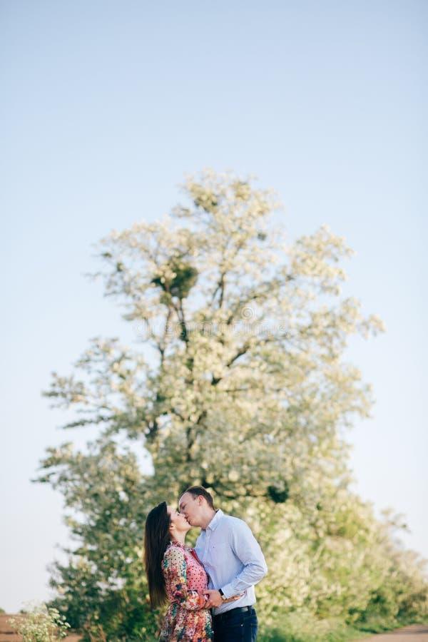 Aperto sensual dos pares novos bonitos e beijo na estrada na luz do sol entre o campo e as árvores da mola Família feliz no amor fotos de stock royalty free