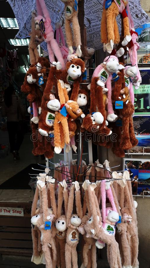 Apes on Gibraltar, but these are cuddly toys as tourist souvenirs stock photography