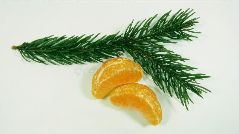 Apetyczni pomarańczowi plasterki tangerines i zielenieją Jedlinowego drzewa na bielu 7432 zdjęcia stock