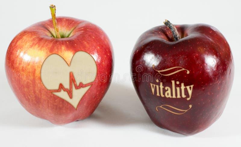 1 Apfel mit der Aufschriftvitalität und ein Apfel mit einem Herzen stockbild