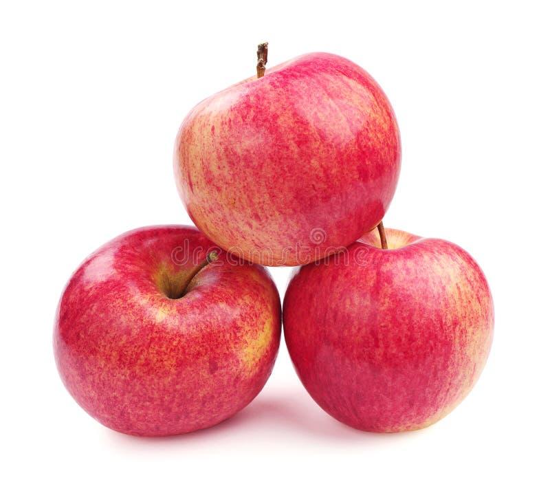 Apfel mit drei Rottönen stockfotografie