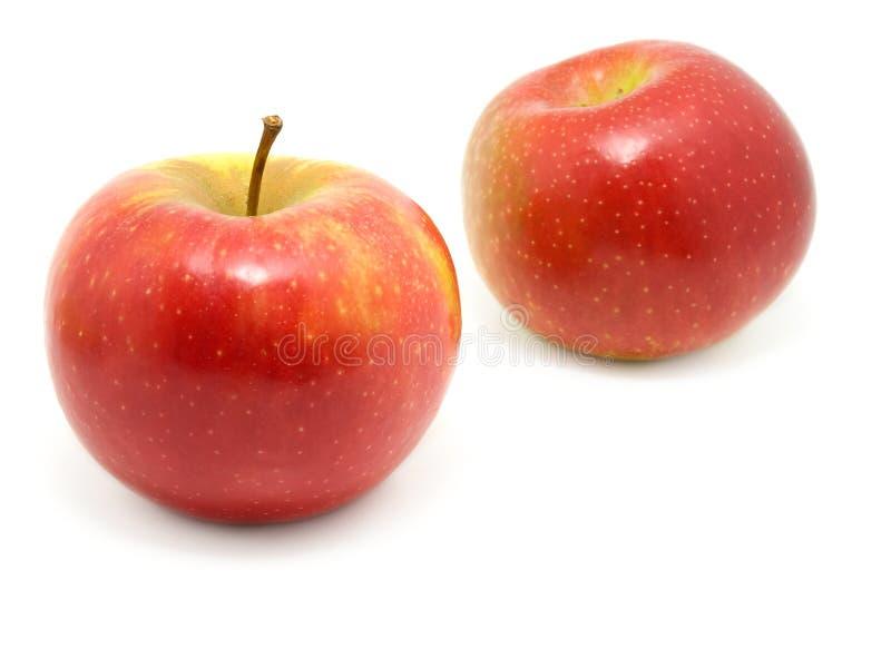 Apfel zwei stockbilder