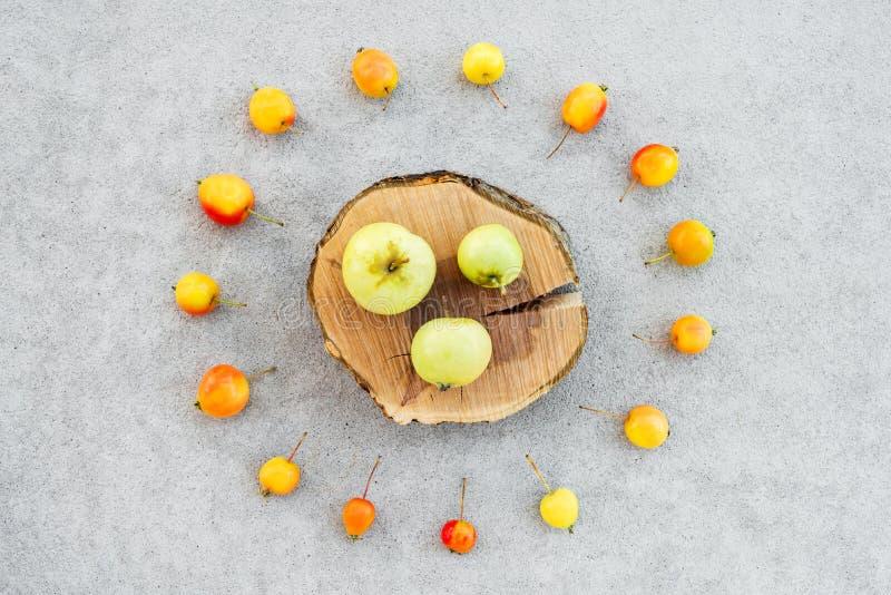 Apfelbaumstumpf und wilde Äpfel auf konkretem Hintergrund lizenzfreie stockfotos