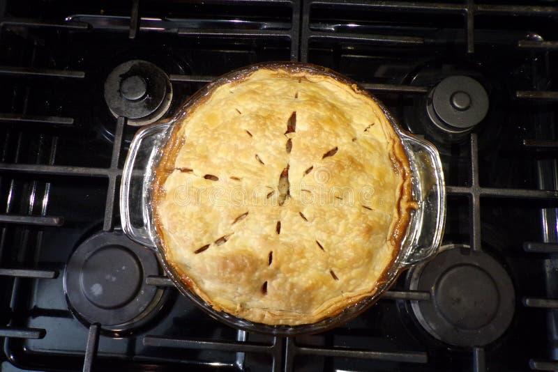 Apfelkuchen - heiß und selbst gemacht und frisch vom Ofen stockfotografie