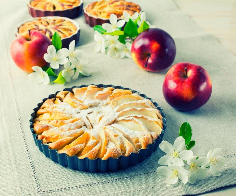 Apfelkuchen mit den reifen Früchten getont lizenzfreies stockbild