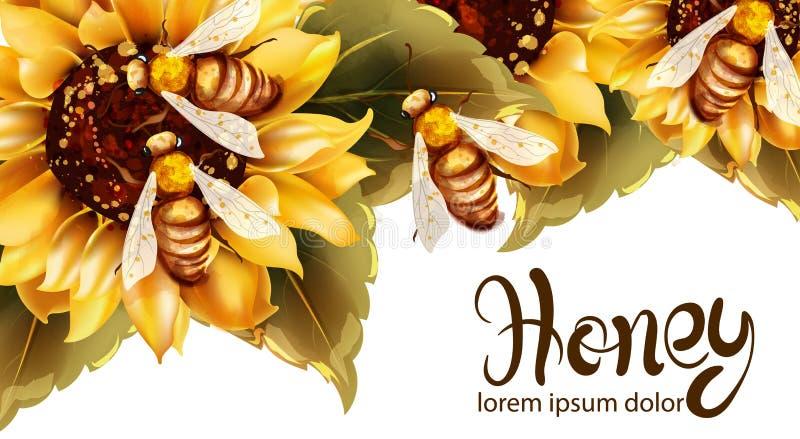 Api che producono miele dall'acquerello di vettore del girasole Modello dell'etichetta Manifesti dell'insegna di estate illustrazione di stock