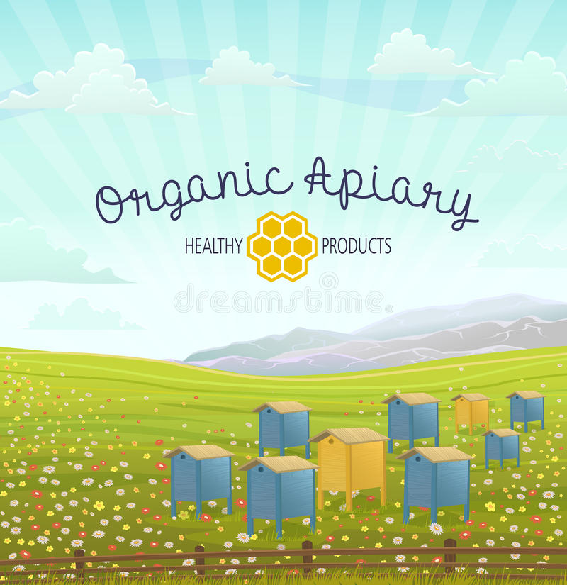 Apiary in alpine meadows mountains. Honey Farm. Apiary in alpine meadows in mountains. Honey Farm. Beehive set. Bee honeycomb. Rustic landscape. Fields of green stock illustration