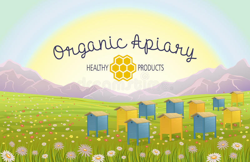 Apiary in alpine meadows in mountains. Honey Farm. Beehive set. Bee honeycomb. Cartoon apiary concept. Rustic area landscape. Fields of green grass. Production royalty free illustration