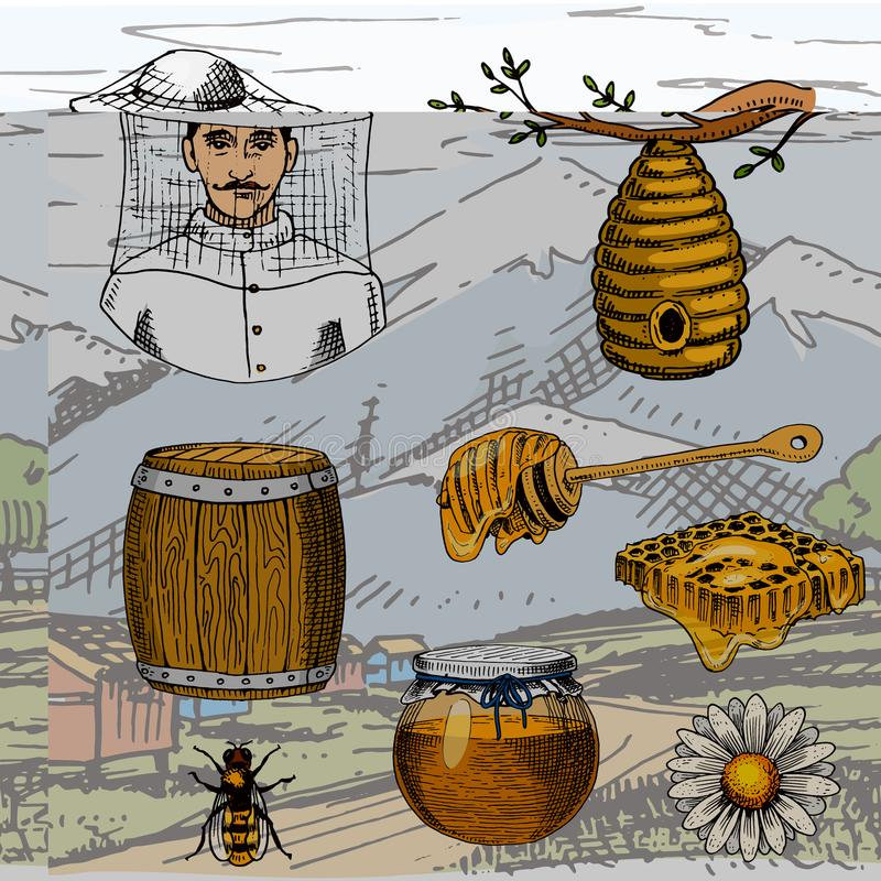 Apiary farm vector hand drawn vintage honey making farmer beekeeper illustration nature product by bee vector illustration