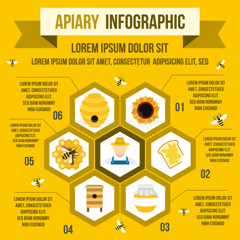 Apiary infographic, flat style vector illustration