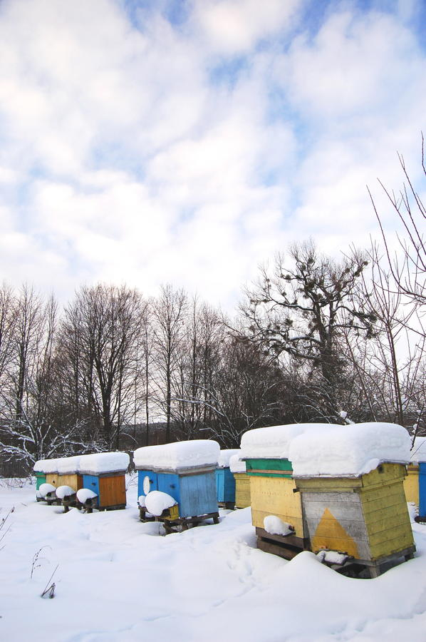 Apiary In Wintertime Royalty Free Stock Photos
