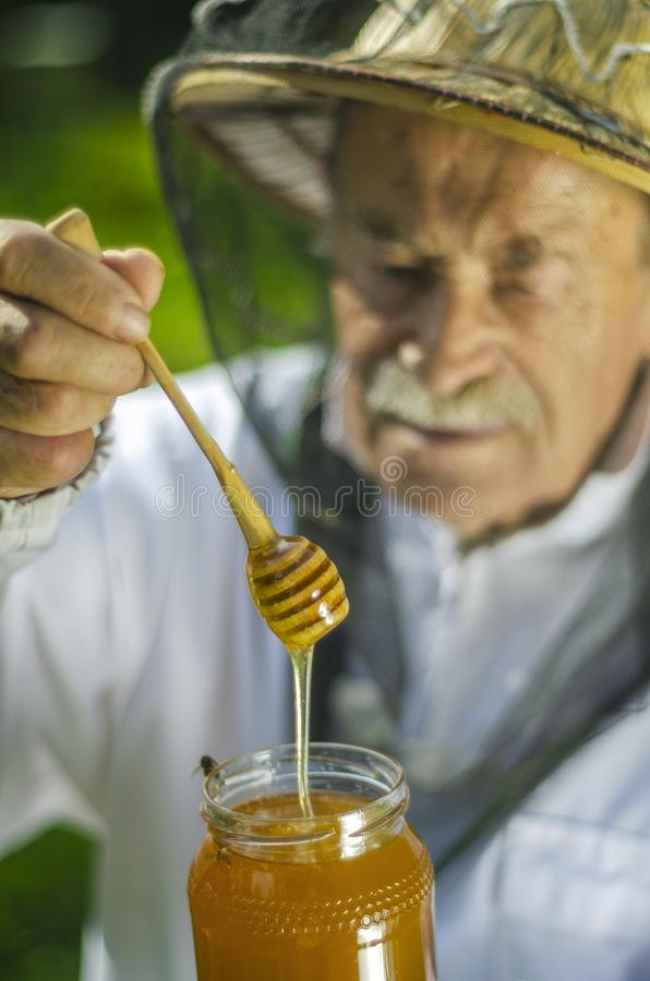 Apicoltore senior che controlla il suo miele in arnia immagine stock
