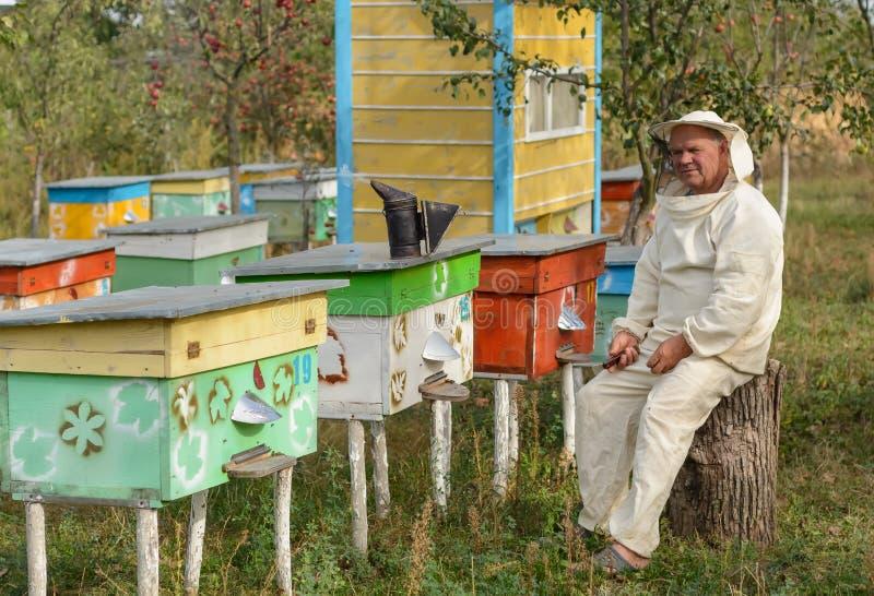 Apiculteur s'asseyant sur un arbre près de la ruche image stock