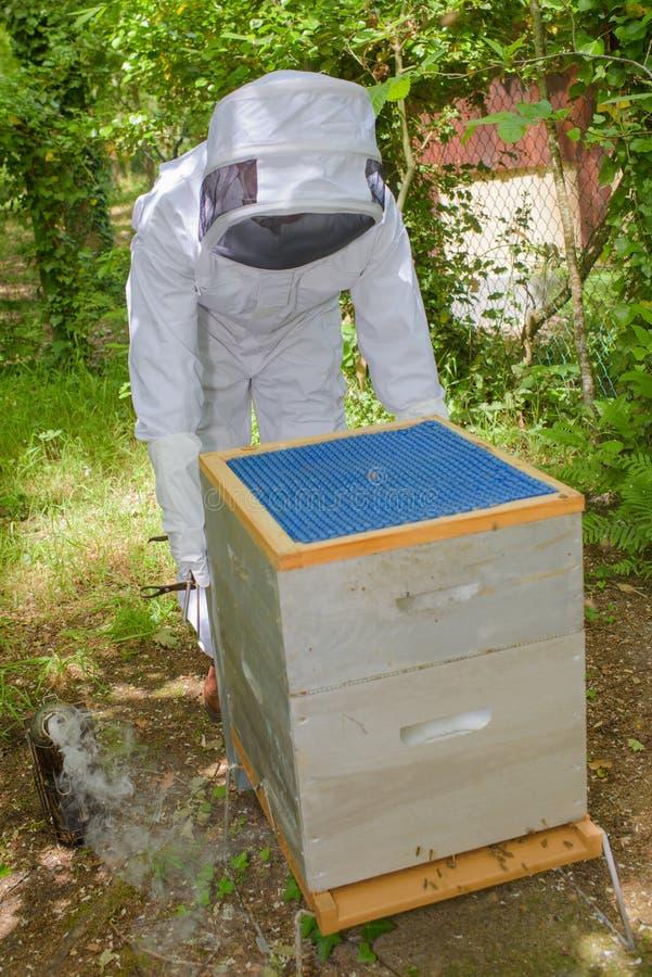 Apiculteur salut des ruches photos stock