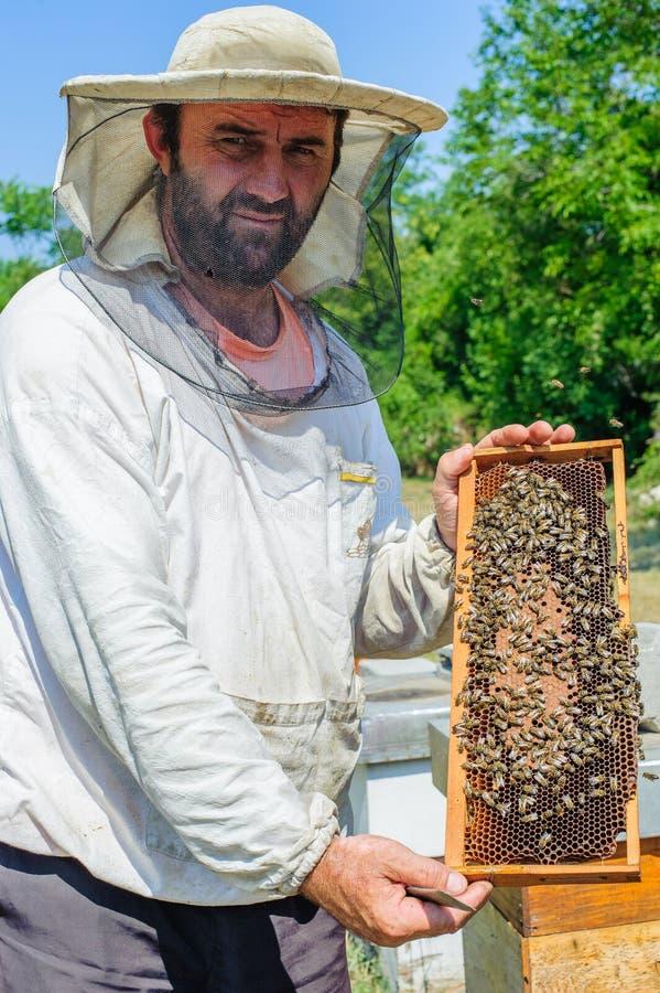 Apiculteur sur le rucher images stock